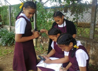 Tonga High School girls using Data loggers