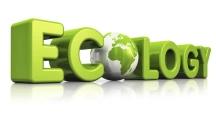 Ecology-web
